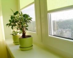 Rosení plastových oken