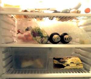 in-the-refrigerator