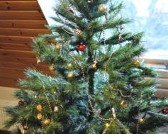 Umělý nebo živý stromeček, který je lepší?