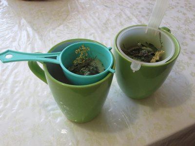 Bylinný čaj z vlastní zahrady